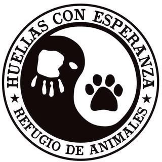 Huellas con Esperanza - Hulp dmv transporten met hulpgoederen. 16406610