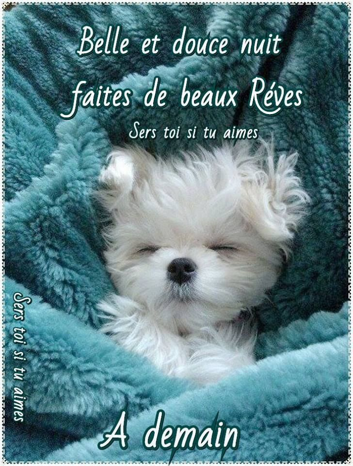Bonne nuit - Page 40 880f1f10