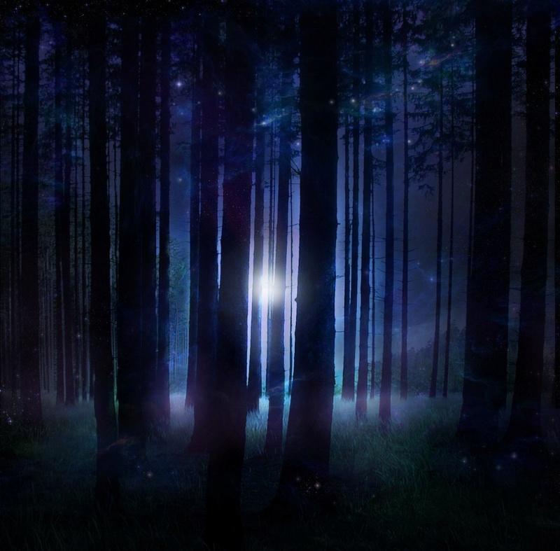 Résumé : L'Ombre de la Forêt : Partie I Foryt_10