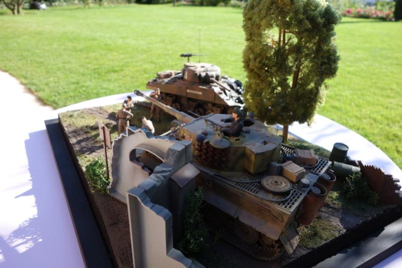 "diorama ""Normandie 1944"" Dsc03473"