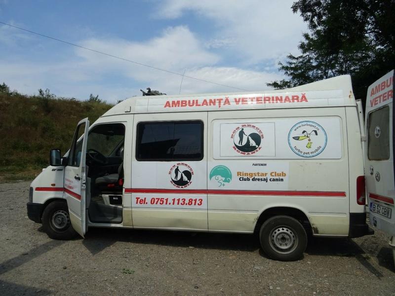 Transfert de 12 + 3 chiens de la fourrière de Piatra Neamt vers Bucarest pour le refuge d'Ellen Img-2058