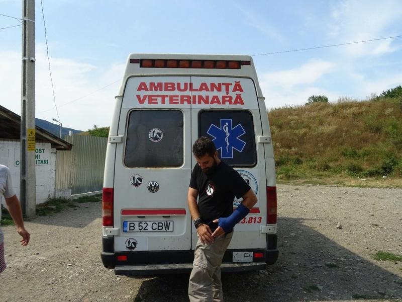 Transfert de 12 + 3 chiens de la fourrière de Piatra Neamt vers Bucarest pour le refuge d'Ellen Img-2071