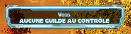 Conquète Guilde Voss10