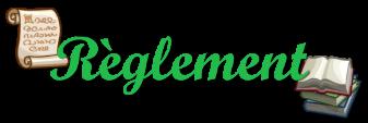- Le réglement et exemple de présentation - Ryglem14