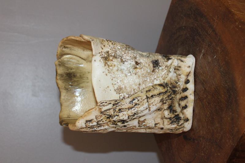 Textured vase DH - Probably Duncan Hood, Dunnydeer Porcelain Scotland  Img_7110