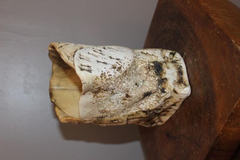 Textured vase DH - Probably Duncan Hood, Dunnydeer Porcelain Scotland  Img_7112