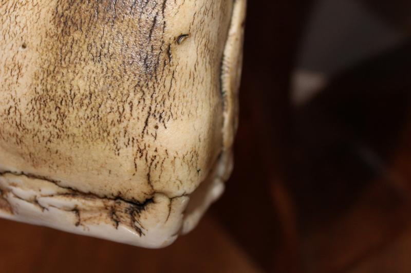 Textured vase DH - Probably Duncan Hood, Dunnydeer Porcelain Scotland  Img_7113