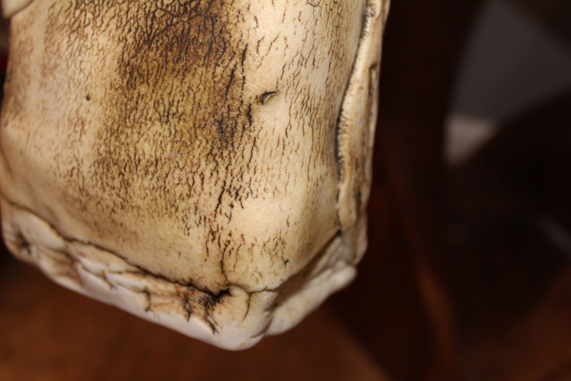 Textured vase DH - Probably Duncan Hood, Dunnydeer Porcelain Scotland  Img_7114