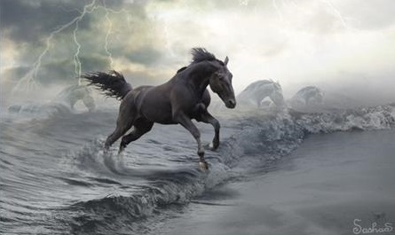 images for possible celtic water horse roleplay 77751110