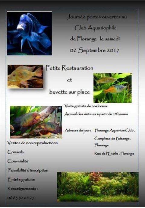 Porte Ouverte Florange (57) - 02 Septembre 2017 Captur10