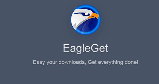 eagleg10.png