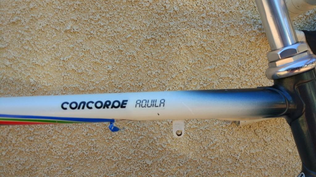 Concorde Aquila [édit] Img_2033
