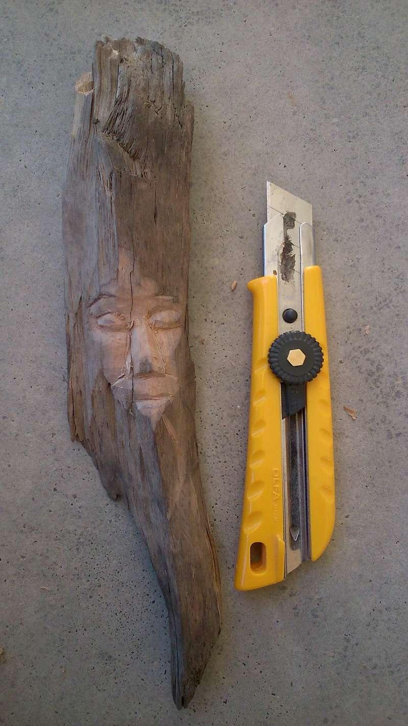 JJ - caché dans le bois Esprit40