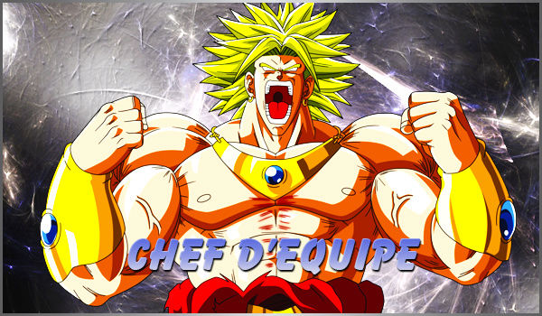 Elections chef d'équipe Chef10