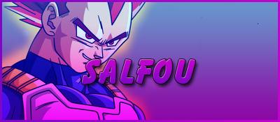 Administrateurs Salfou15