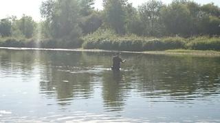 Petite sortie pêche  avec les chiens  Dsc_0214