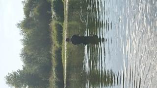 Petite sortie pêche  avec les chiens  Dsc_0216