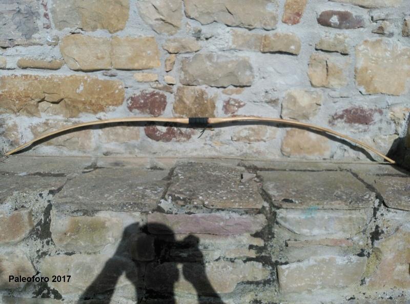 Arco plano de avellano Img-2015