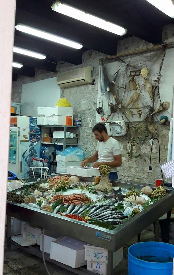 RIBA - MORSKA i SLATKOVODNA: vrste, zanimljivosti, pitanja, ribolov, recepti za pripremu... - Page 21 Trogir11