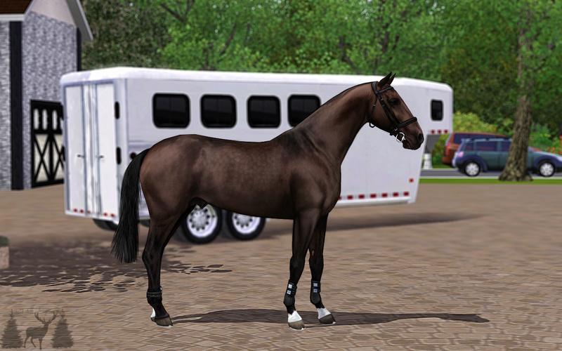 Регистрация лошадей в RHF 2 - Страница 7 Ou_211