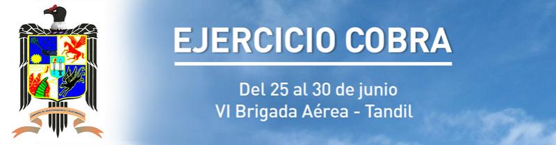 "Ejercicio ""Cobra""- Fuerza Aérea Argentina Foto_h10"