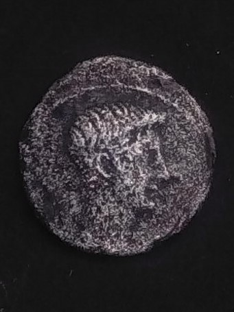 Denario de Augusto. IMP CAE SAR DIVI F, alrededor de escudo redondo. Ceca Hispania o Norte Italia. Img_2012
