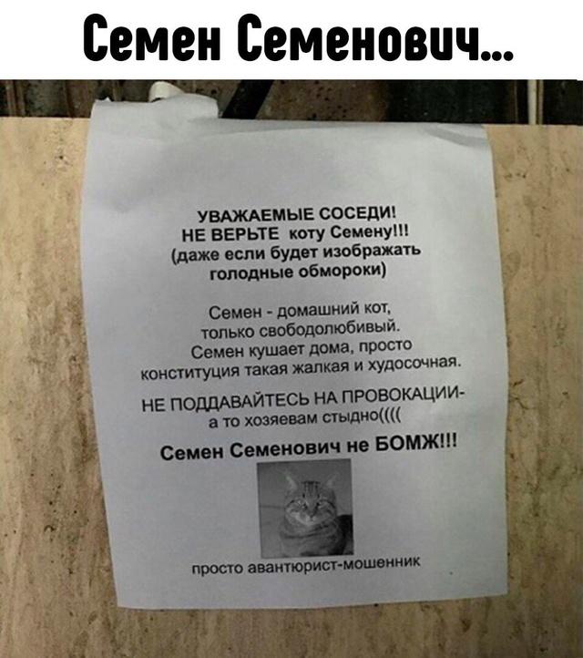 Крымский юмор (анекдоты,шутки,смешные истории) Pgj62r10