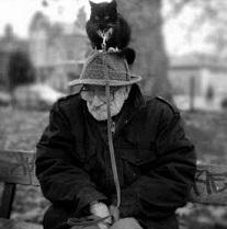 silitettäis sanoilla, niinkuin kissaa silitetään Yman_w11
