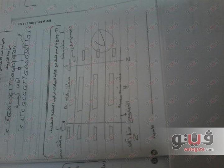 الطالبة هدير من الدقهلية - دفعنا 700جنيه للتظلم من نتيجة الثانوية العامة لا الورق ورقى ولا الخط خطى 21810