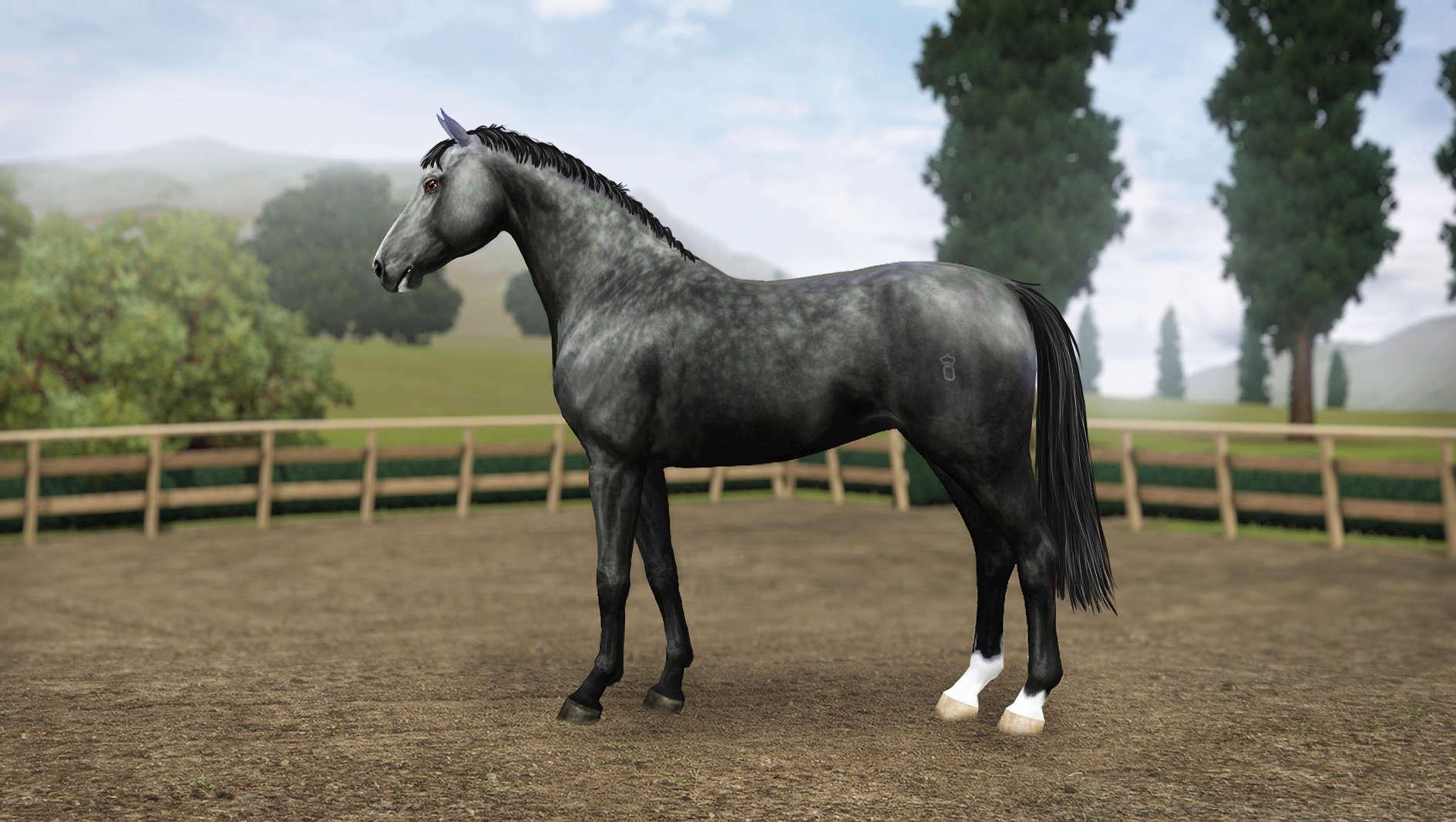 Регистрация лошадей в RHF 2 - Страница 8 Screen13