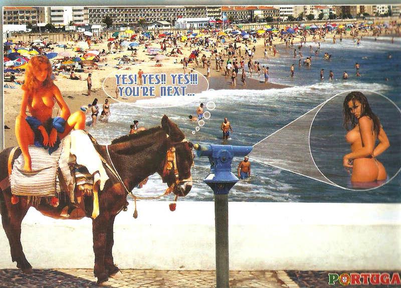 Intercambio postalero - POSTCROSSING VERANO 2017 El Desván - Página 3 Burro10