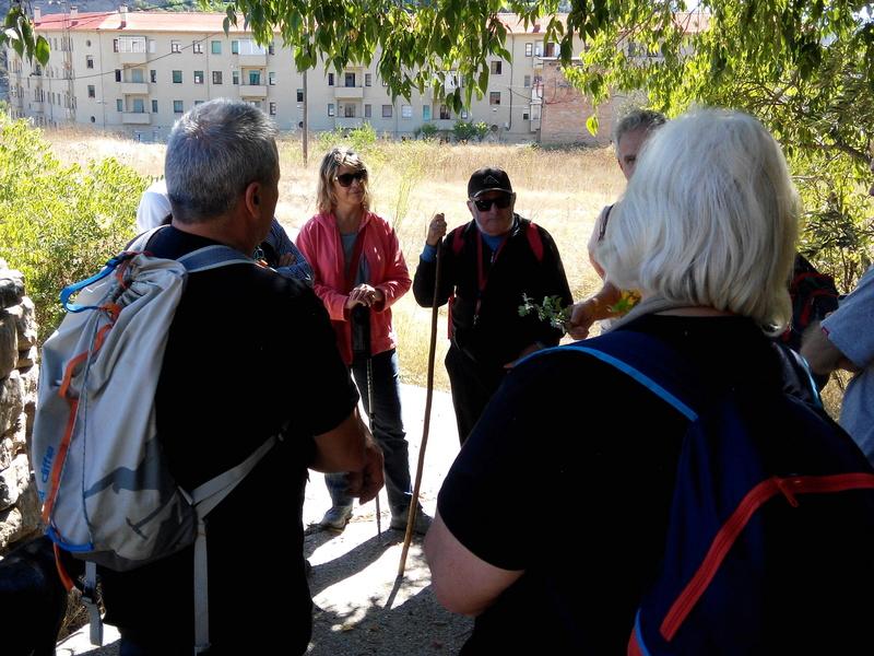 Excursió amb el Professor Josep Maria Mata pels voltants de Manresa. 112