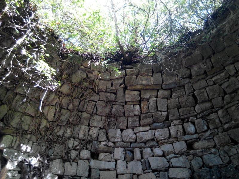 Excursió amb el Professor Josep Maria Mata pels voltants de Manresa. 811