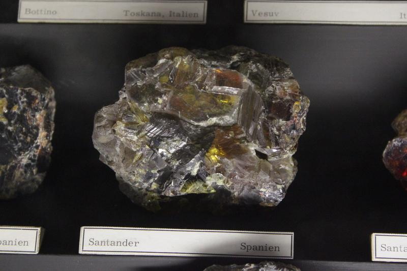 Museo de Historia Natural de Viena Img_5014
