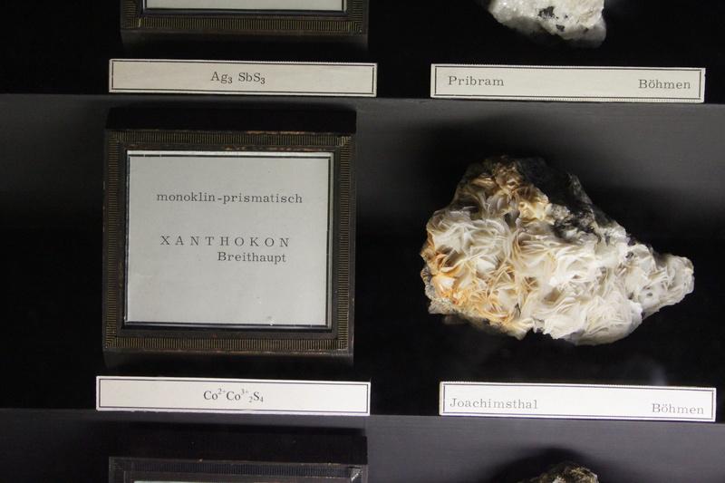 Museo de Historia Natural de Viena Img_5017