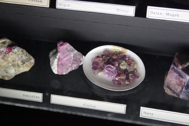 Museo de Historia Natural de Viena Img_5027