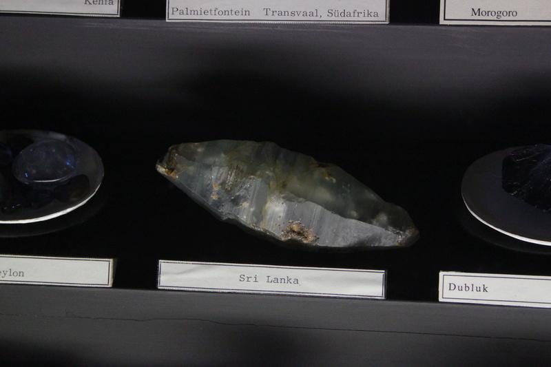 Museo de Historia Natural de Viena Img_5030