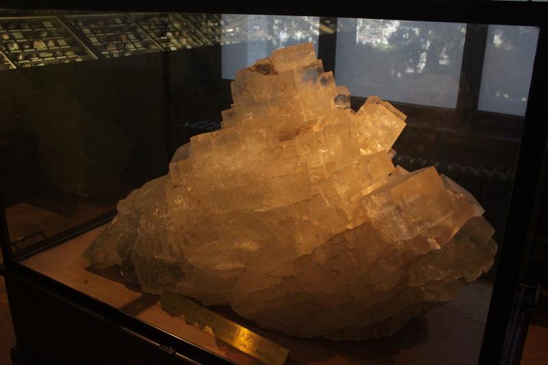 Museo de Historia Natural de Viena Img_5035