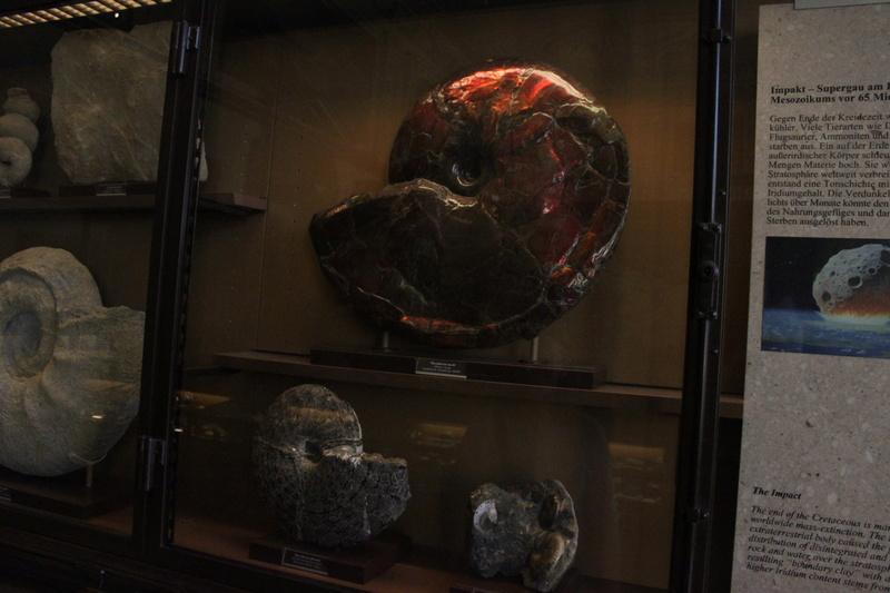 Museo de Historia Natural de Viena Img_5110