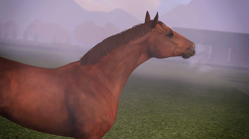 """Between The Worlds farm"" Круговорот коней в природе! - Страница 42 Screee10"