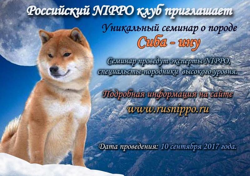 5-ое юбилейное NIPPO SHOW - 2017 в Москве - Страница 2 20030710