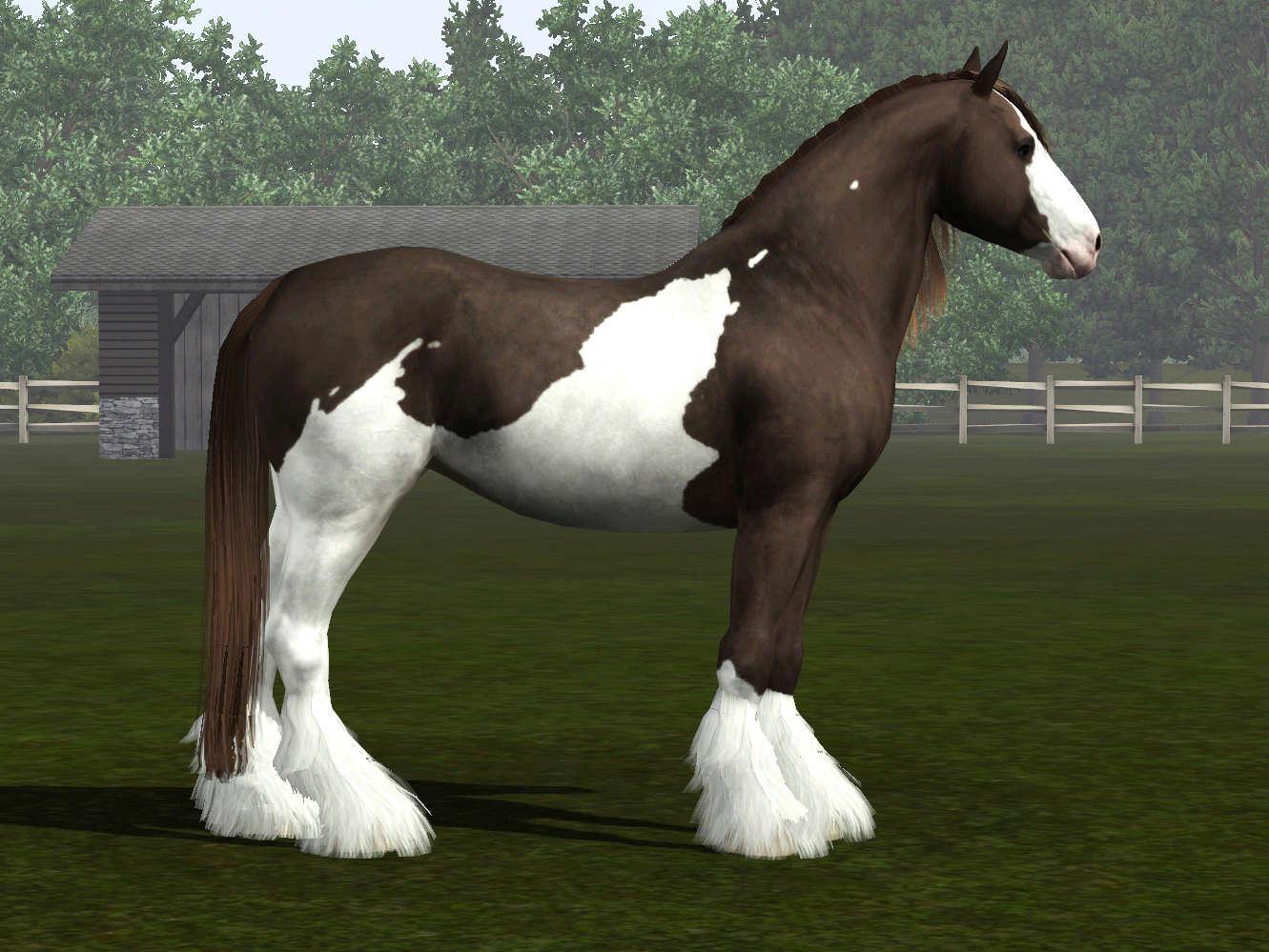 Регистрация лошадей в RHF 2 - Страница 7 Screen15