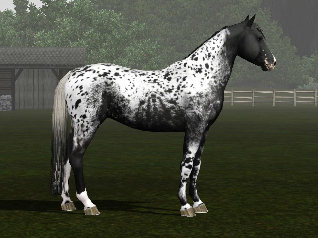Регистрация лошадей в RHF 2 - Страница 7 Screen16