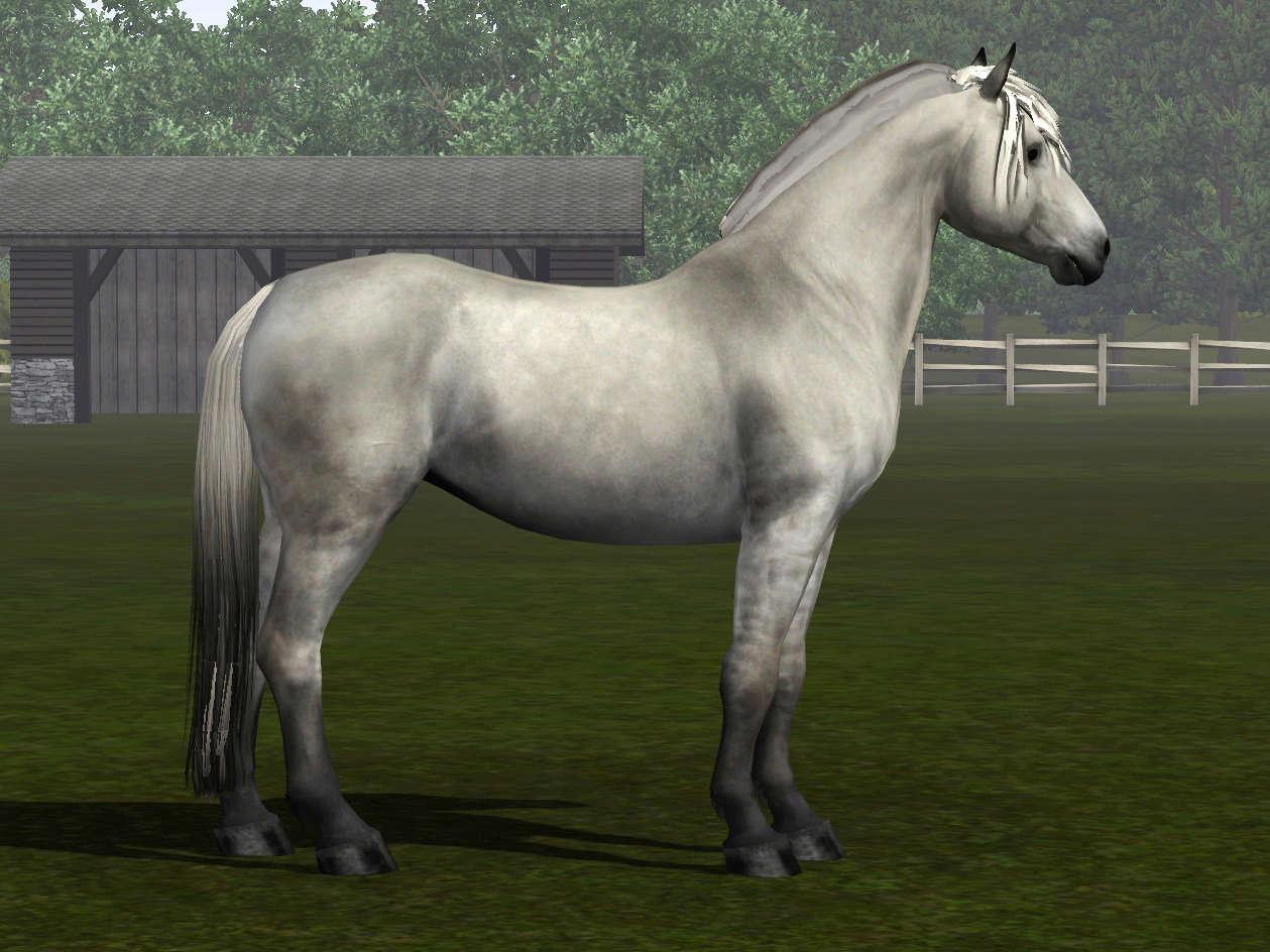 Регистрация лошадей в RHF 2 - Страница 7 Screen17