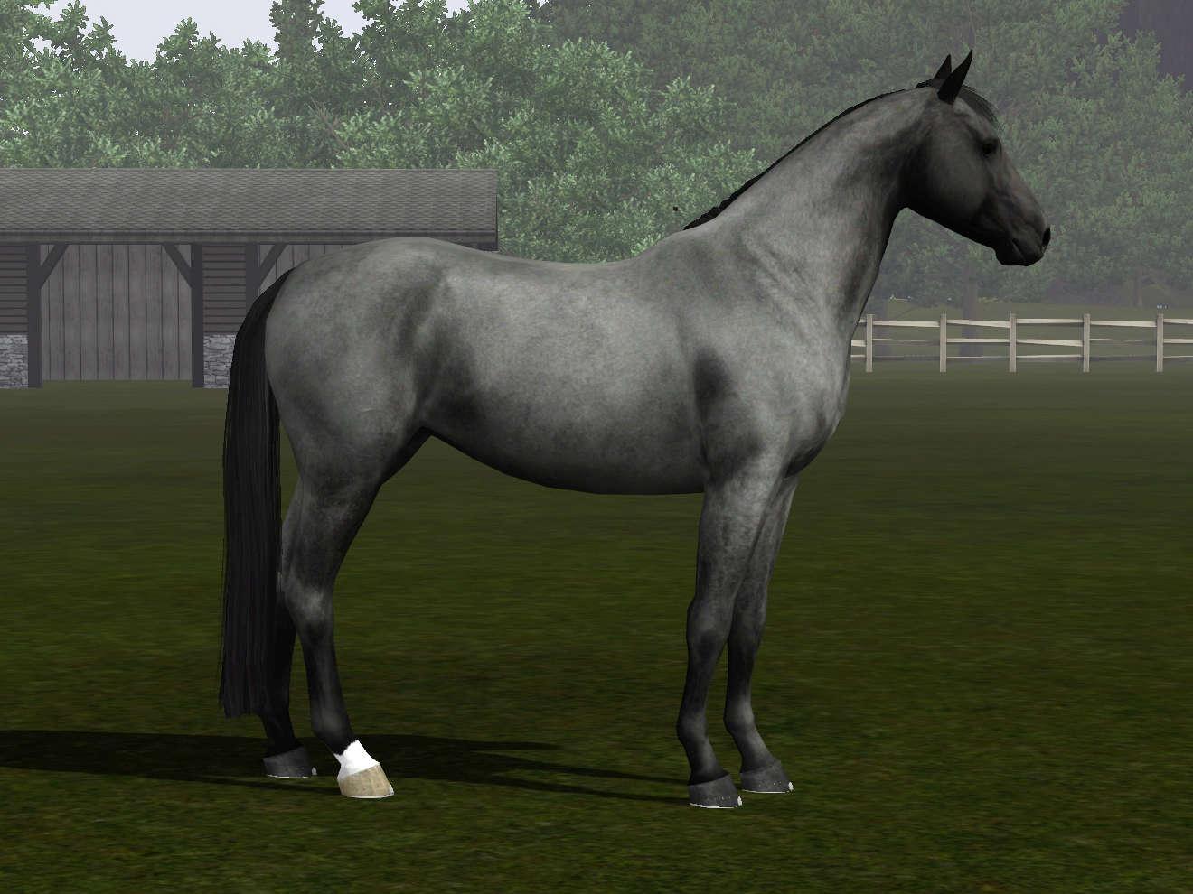 Регистрация лошадей в RHF 2 - Страница 7 Screen18