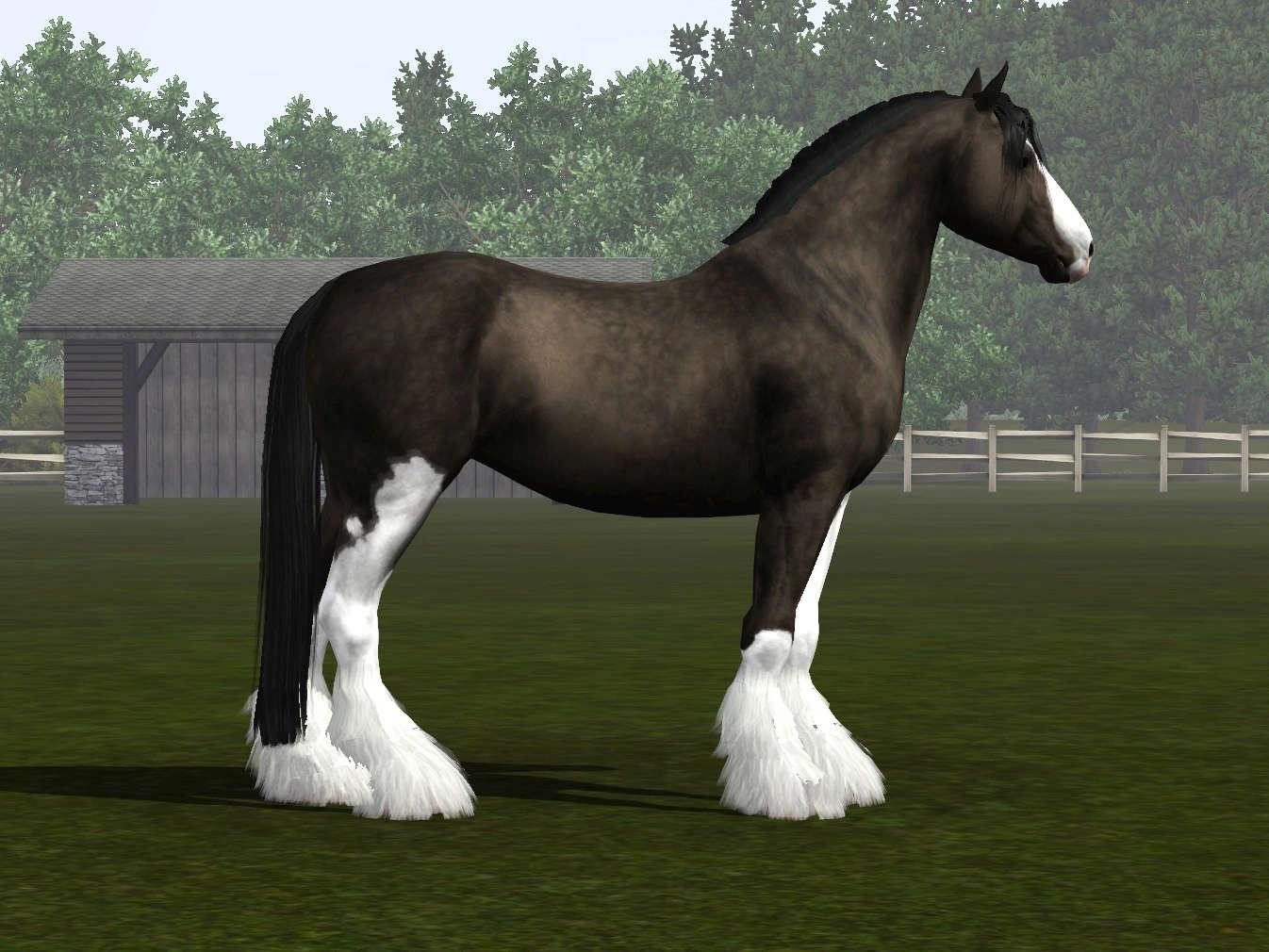 Регистрация лошадей в RHF 2 - Страница 7 Screen20