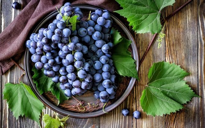Легенды о винограде Dad8c010