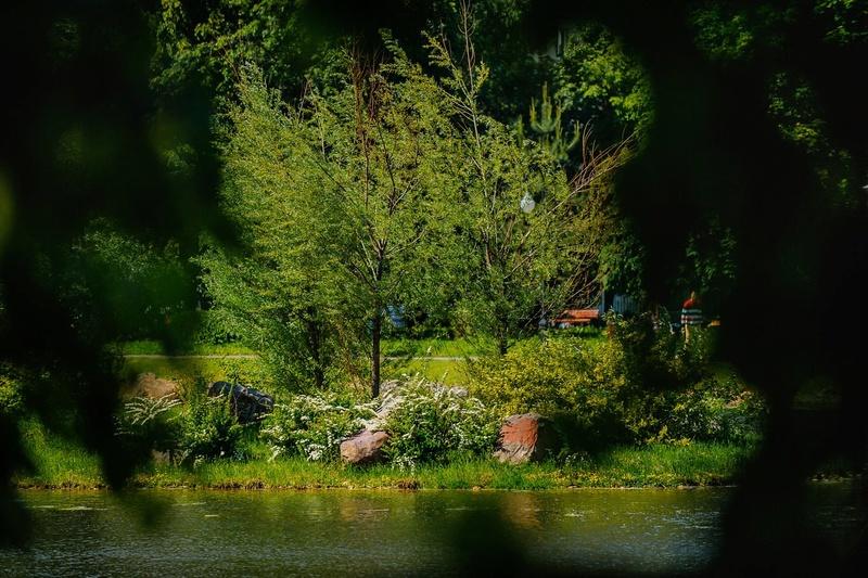 """Природа у ЖК """"Летний сад"""" - Страница 3 Axahwp10"""