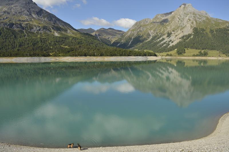 Vacanze in montagna _dsc0112