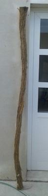 Longbow, consulta de equilibrado 510